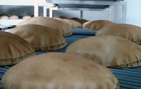 A Loaf's Journey